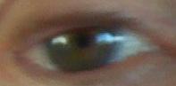 Geoff's Eye