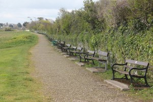 An infinity of benches