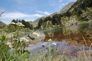 Lac d'Etagnas