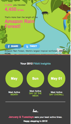 Fitbit annual stats email