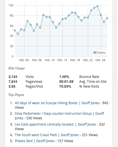 Geoff Jones site statistics by Google